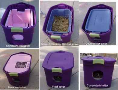 Colony Management – Shelter | Feral Cat Focus on feral cat shelter house, feral cat house plans, feral cat shelters for outside, feral cats in winter care, dog house outside, diy insulated cat house outside,