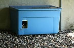 outdoor-litter-box