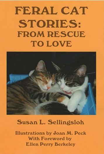 Feral Cat Stories 3